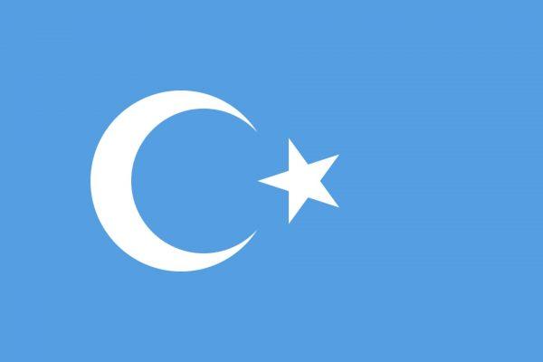 East Turkestan Flag